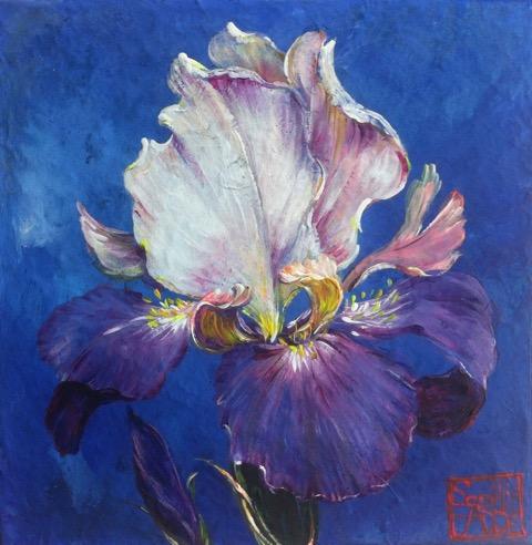 SA4 - L'iris bleu (20x20 cm, acrylique sur collage sur toile, 120 euros)
